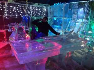 Ледяная сказка СПб стол и я
