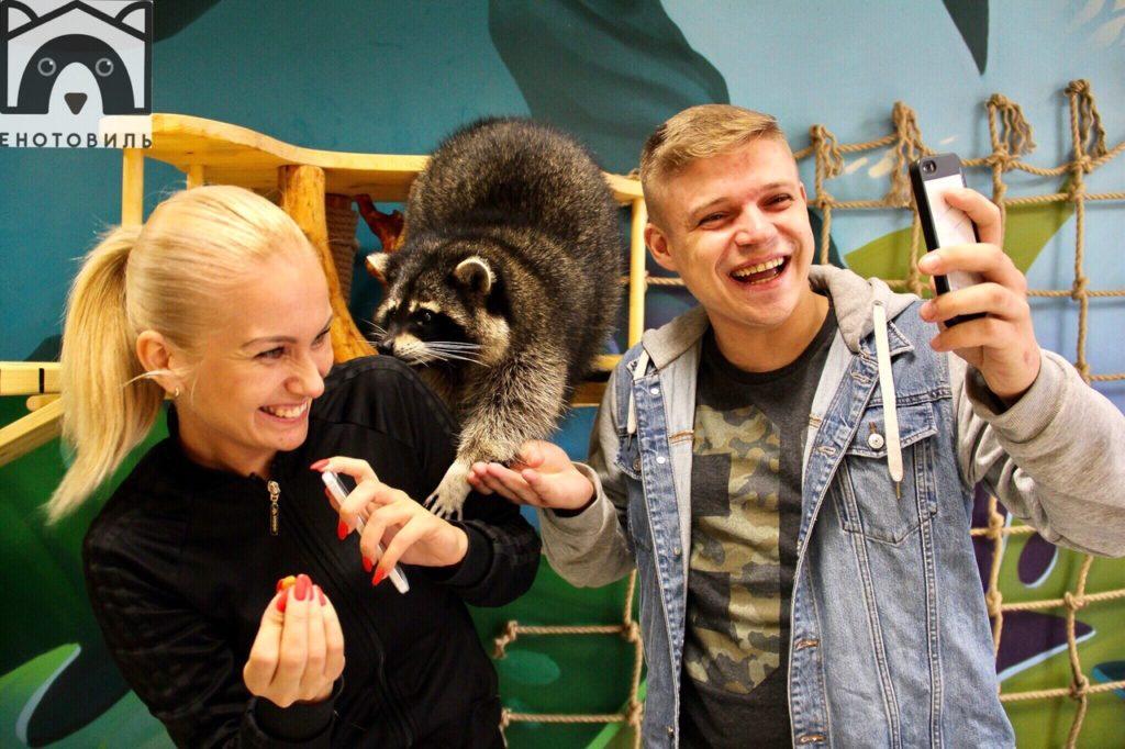 Енотовиль - выставка ручных енотов в Петербурге