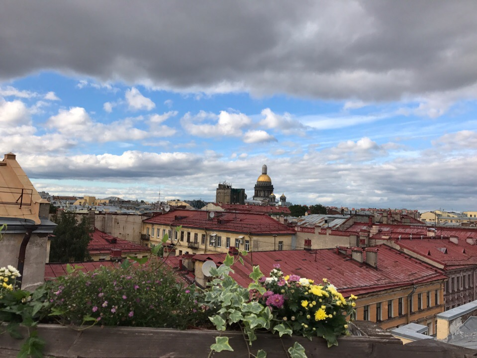 ТОП мест в Петербурге, где учат бесплатно