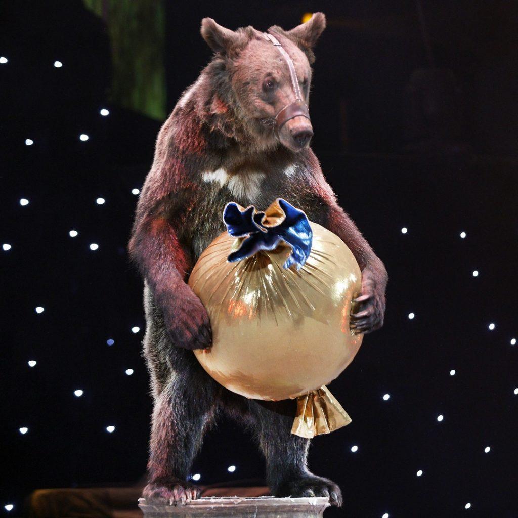 Новогоднее цирковое шоу «OFU. Приземление»