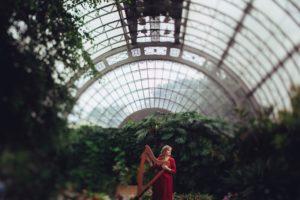 Электроарфа в Оранжерее Таврического сада