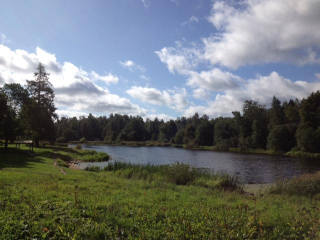 Приоратский парк - место для прогулок и фестивалей